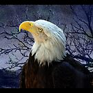 Stand Proud and Believe by Vicki Pelham