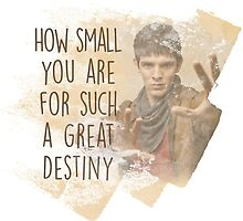 Merlin - How Small you are for such a Great Destiny by eelagreen