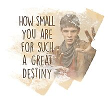 Merlin - How Small you are for such a Great Destiny Photographic Print