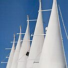 Guy Lines & Majestic Sails by phil decocco