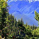 """""""Spring In The North Cascades"""" by Lynn Bawden"""