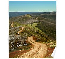 Razor Back Drive,Mt Blue Rag Poster
