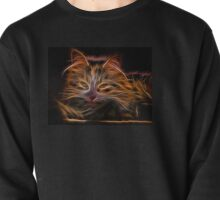 Electric Glowing Cat Pullover