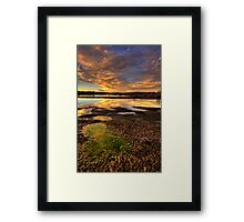 Puddles- Cropped 1 Framed Print