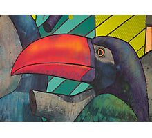 Toucan Graffiti Photographic Print