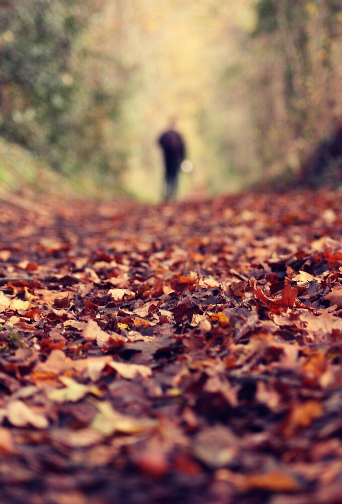 Autumn Walk by Ursula Rodgers