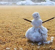 """""""Looks Like I Picked The Wrong Day To Become A Snowman ..."""" by J J  Everson"""
