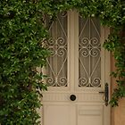 pretty vine surrounded door, Ramatuelle, France by BronReid