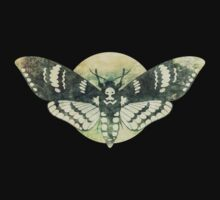 Moth And Moon by LeighWortley