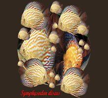 Symphysodon discus 'T' Shirt. Profits to the RSPCA Unisex T-Shirt