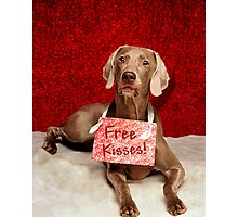 Free Kisses   Photographic Print