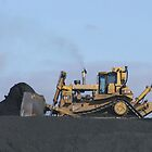 D11 Pushing Coal - Boonal Queensland Australia by Gryphonn