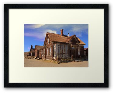 Abandoned building from the California Gold Rush by Susan Leonard