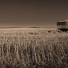 The Barley Bin by Paul Thompson