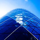 The Big Gherkin by Varun George
