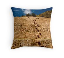 Step by Step Throw Pillow