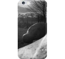 Concrete Hippos iPhone Case/Skin