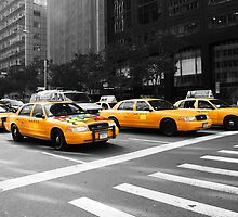 New York Yellow Cabs by Susan Leonard