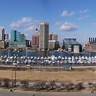 Baltimore skyline and inner harbor by nealbarnett