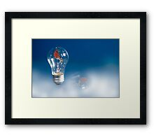 Cardinal in the Light Framed Print