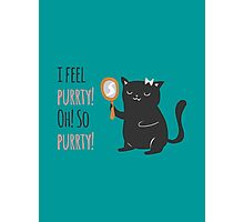 Catty Thoughts! Photographic Print