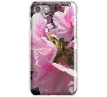 Pretty Pink Azalea Blossoms iPhone Case/Skin