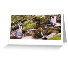 Woodland Stream at Glencree co, Wicklow. Greeting Card