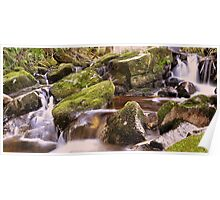 Woodland Stream at Glencree co, Wicklow. Poster