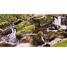 Woodland Stream at Glencree co, Wicklow. Photographic Print