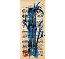 'blue' - watercolor and brush pen bamboo drawing Photographic Print