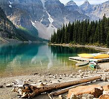Moraine Lake Banff National Park by Teresa Zieba