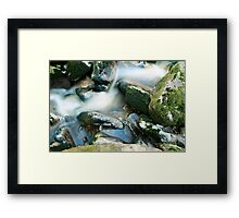 Woodland water at Glencree No1 Framed Print