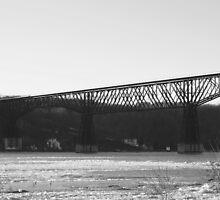 Walkway Over the Hudson by Melzo318