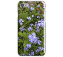Forget Me Nots (flowers) iPhone Case/Skin