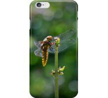 Dragon fly on Weston Moor iPhone Case/Skin