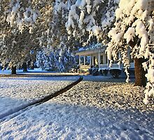 Snow On The Plantation by photosan