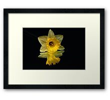 Seeing Doubles Framed Print