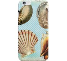 Vintage Beach iPhone Case/Skin
