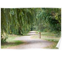 The Willow Tree Path Poster