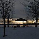 Silence of Winter  by Joanne  Bradley