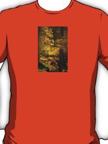 A Light In The Forest T-Shirt
