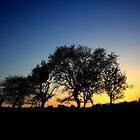 Dorset Silhouette by Hoodle-Hoo