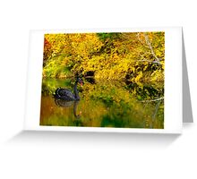 Pianissimo a Quiet Autumn Scene Greeting Card
