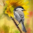 Black Capped Chickadee Checking Out The Sunflowers by Diane Schuster