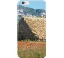 Tobacco Shed  iPhone Case/Skin