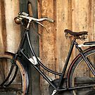 Simple Pleasure Of Bike Ride by Charuhas  Images