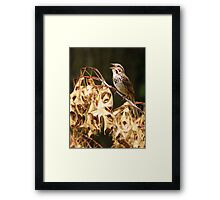 Let's Sing a New Song Framed Print