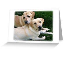 ~ My Babies  ~ Trooper & Rosie ~ Greeting Card