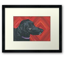 Sally Black Lab Mix Framed Print