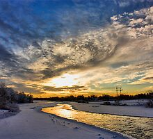Sunrise on the Bow River in Calgary by Michael Phillips